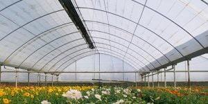 گرماتاب در گلخانه، مرغداری و دامداری 13