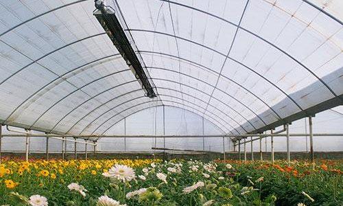گرماتاب در گلخانه، مرغداری و دامداری 9