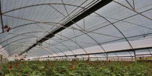گرماتاب در گلخانه، مرغداری و دامداری 4
